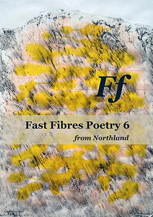 Fast Fibres 6