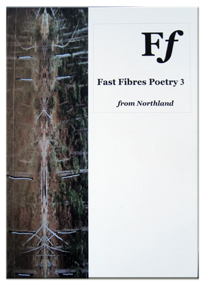 Fast Fibres 3