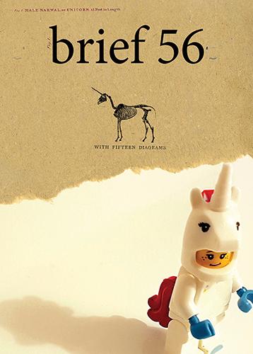 Brief issue 56